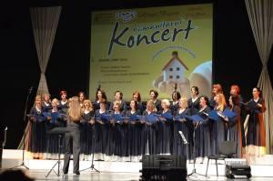 Humanitarian Concert